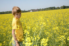 Smiling boy returning home Royalty Free Stock Images