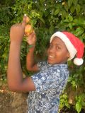 Smiling boy with Santa hat holding fruit outdoors royalty free stock images