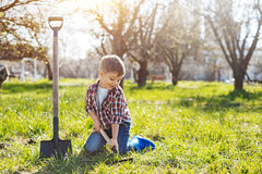 Smiling boy scooping ground in yard. Juvenile helper. Shot of a little child sitting on a green vernal lawn and digging a hole in the soil for future fruit trees Stock Photos