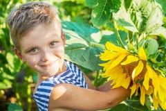 Smiling boy among sunflowers Royalty Free Stock Photos