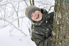 Smiling boy in winter forest Stock Photos