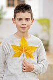 Smiling boy with yellow leave. In hands, enjoying the autumn royalty free stock images