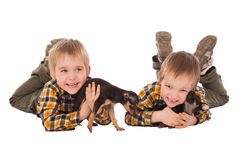 Smiling boys hodling puppies lie on the floor Royalty Free Stock Photography