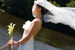 Smiling bride. With bouquet under veil Stock Photography