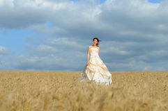 Smiling bride in a field Stock Image