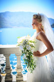 Smiling bride Royalty Free Stock Image