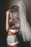 Smiling bride in whiteness is posing under veil Stock Images