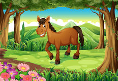 A smiling brown horse at the forest. Illustration of a smiling brown horse at the forest Stock Photography
