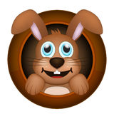 Smiling brown rabbit in circle hole Royalty Free Stock Photos