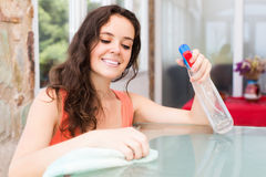Smiling brunette girl cleaning  furniture Royalty Free Stock Image