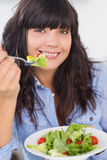 Smiling brunette having a salad for lunch Stock Photography