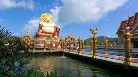 Smiling Buddha of wealth statue stock video footage