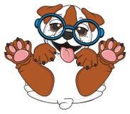 Smiling bulldog in glasses Stock Image