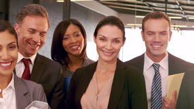 Smiling business people posing together. In the office stock video footage