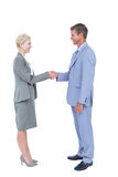 Smiling business people shaking hands Stock Photography