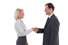 Smiling business people shaking hands Royalty Free Stock Photography