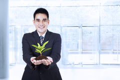 Smiling businessman holding a plant Royalty Free Stock Photos