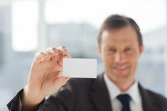 Smiling businessman showing business card. In his office Royalty Free Stock Photos