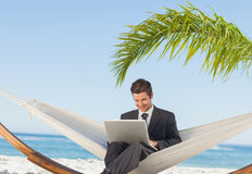 Smiling businessman using laptop and sitting in hammock. At beach Stock Images