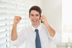Smiling businessman using mobile phone while clenching fist Stock Photo