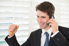 Smiling businessman using mobile phone while clenching fist Stock Photography