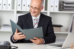 Smiling businessmann looking at cv Royalty Free Stock Photos