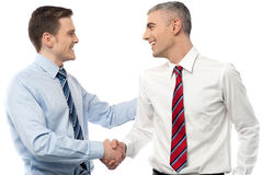 Smiling businessmen shaking hands Royalty Free Stock Image