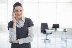 Smiling businesswoman on the phone posing Stock Photography
