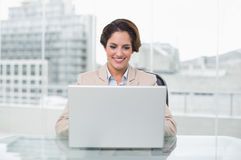 Smiling businesswoman using laptop at her desk Stock Photography