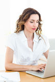 Smiling businesswoman working with her laptop Royalty Free Stock Image