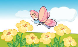 A smiling butterfly Stock Photography