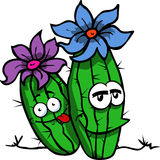 Smiling Cactus plant Royalty Free Stock Image
