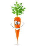 Smiling carrot with top. Carrot with top vector illustration isolated on white background Royalty Free Stock Images