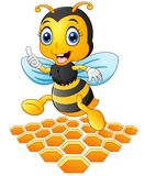 Smiling cartoon bee with a honeycomb Royalty Free Stock Images