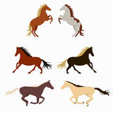 Smiling cartoon horses on white background and  horse Stock Photography