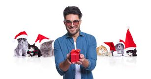 smiling casual man offers christmas present with santa cats behind royalty free stock photography