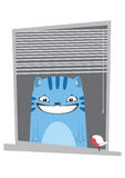 Smiling cat in the window. Stock Image