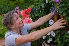 Smiling caucaisan maturehappy woman gardening. Near the home Royalty Free Stock Photo
