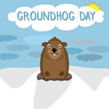 Smiling character of woodchuck on winter background. Happy Royalty Free Stock Image