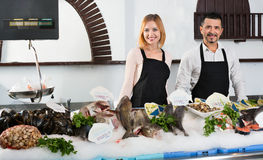 Smiling cheerful shop assistants selling fresh fish. And chilled seafood stock images
