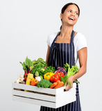 Smiling chef with apron holding fresh local organic produce. Portrait of happy young woman chef holding a crate full of fresh organic vegetables on grey Stock Photography