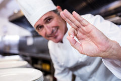 Smiling chef showing ok sign Stock Photos