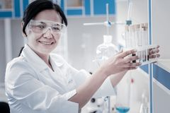 Smiling chemist posing with set of test tubes. No time for worries. Cheerful female scientist wearing safety glasses looking into the camera with a smile on her Royalty Free Stock Image