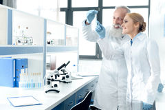 Smiling chemists in white coats looking at tube in chemical laboratory with microscopes. Two smiling chemists in white coats looking at tube in chemical Royalty Free Stock Image