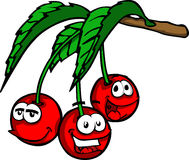 Smiling Cherry Royalty Free Stock Images