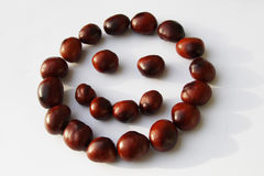 Smiling chestnuts. Beautiful smile made of chestnuts Royalty Free Stock Photography
