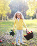 Smiling child with autumn basket having fun outdoors. In warm sunny day Stock Images