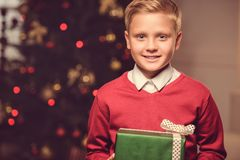 Smiling child with christmas gift Stock Images