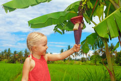 Smiling child exploring the nature - banana flower and fruits Royalty Free Stock Images
