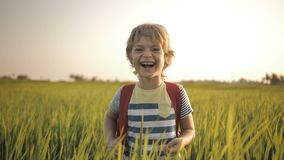 Smiling child in the green grass of rice field on way home from school. stock footage